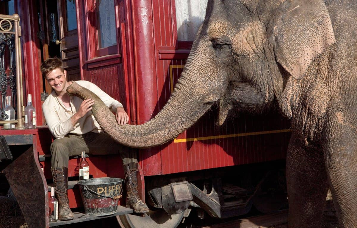 WATER FOR ELEPHANTS  Jacob (Robert Pattinson) gets acquainted with Rosie the elephant.  Photo credit: David James  TM and © 2011 Twentieth Century Fox Film Corporation. ÊAll rights reserved. ÊNot for sale or duplication.