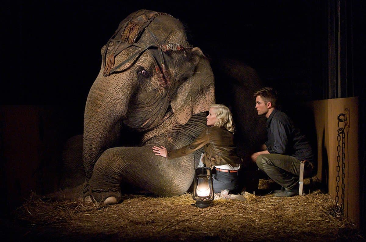 WATER FOR ELEPHANTS  Marlena (Reese Witherspoon) and Jacob (Robert Pattinson) come together through their compassion for a special elephant.  Photo credit: David James  TM and © 2011 Twentieth Century Fox Film Corporation. ÊAll rights reserved. ÊNot for sale or duplication.