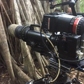 Canon helps Offspring Films to see monkeys in the dark