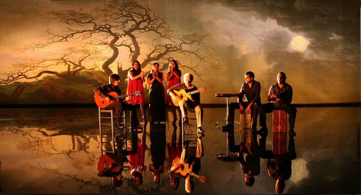 <em>Flamenco, Flamenco</em>, 2010