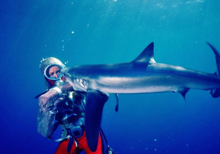 Playing-With-Sharks-1