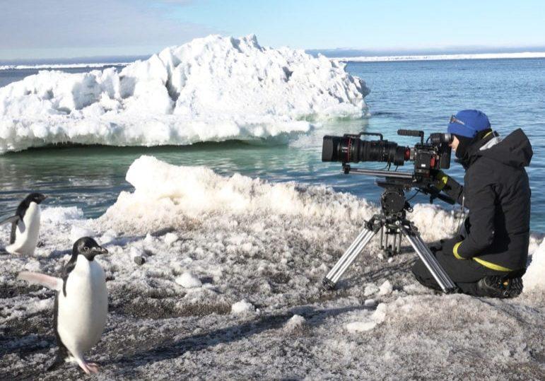 canon-pro-sophie-darlington-filming-wildlife-cn20-1